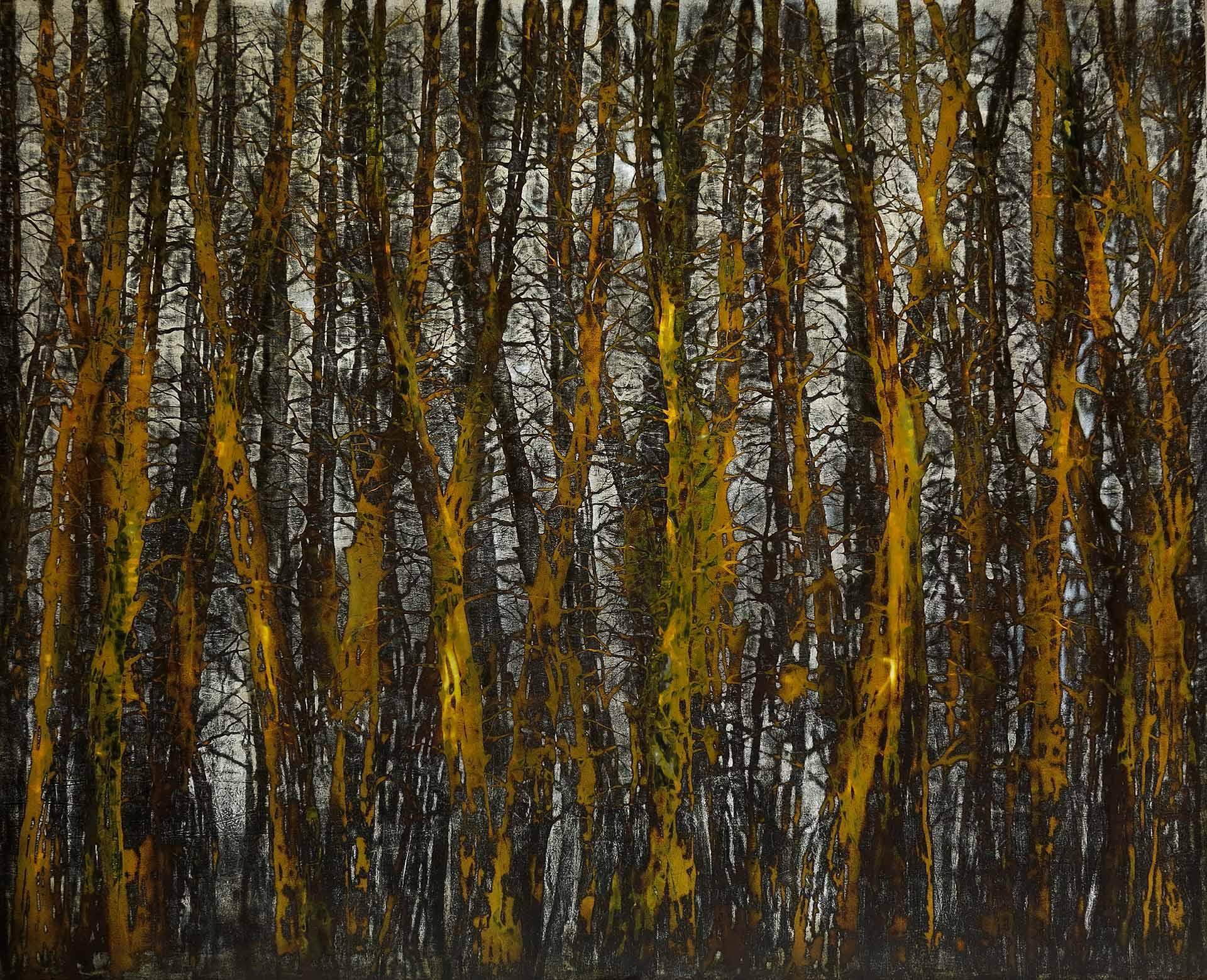 Tuval üzeri akrilik – Acrylic on canvas 170*140 cm